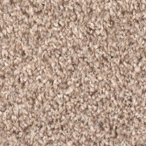 Stainsafe Moorland Twist 790 Secondary Back Carpet